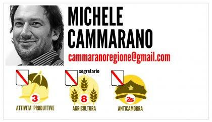 Michele Cammarano